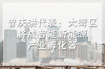 曾庆洪代表:大湾区将成智能新能源产业孵化器