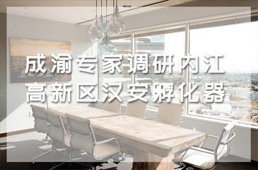 成渝专家调研内江高新区汉安孵化器