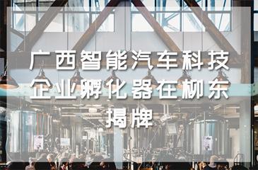 广西智能汽车科技企业孵化器在柳东揭牌