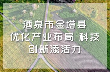 酒泉市金塔县:优化产业布局 科技创新添活力